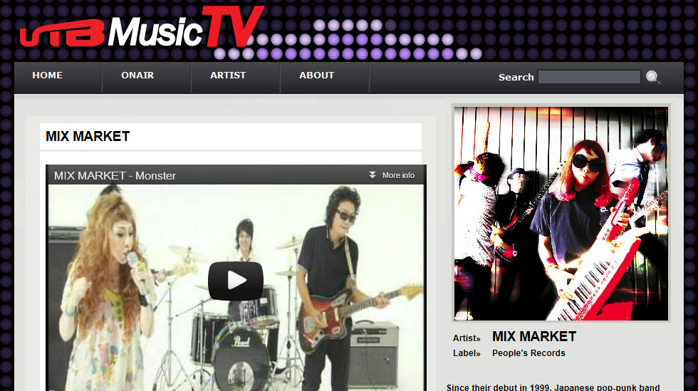 Media: Television and Music Videos Essay